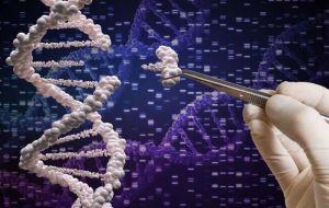 CRISPR-терапия борется с редким заболеванием, при котором белки забивают органы
