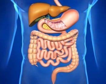 Лечение при остановке работы желудка