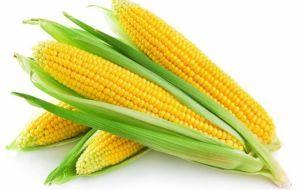 Особенности употребления кукурузы при панкреатите