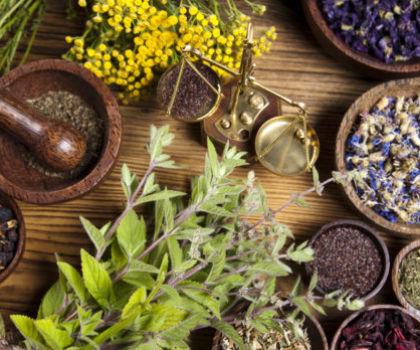 Особенности применения народных средств при желчнокаменной болезни