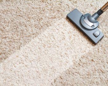 Чистота в доме – залог здоровья семьи