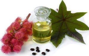 Применение касторового масла для лечения запоров