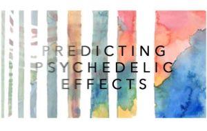 Прогнозирование, кому лучше всего подойдет психоделическая терапия
