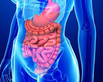 Симптомы и возможность лечения плоскоклеточного рака прямой кишки