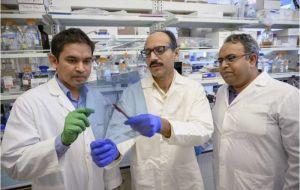 Белок, борющийся с воспалением, может улучшить лечение ревматоидного артрита