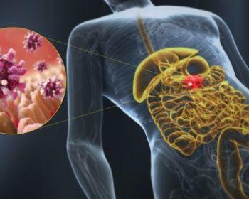 Причины гастроэнтерита и методы борьбы с болезнью