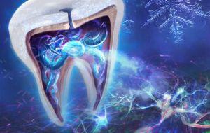 Как зубы чувствуют холод