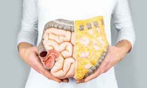 Как восстановить нормальную перистальтику кишечника?