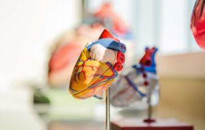 Психическое заболевание связано с худшими исходами сердечного приступа