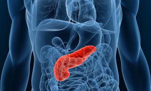 Диагностика работы поджелудочной железы