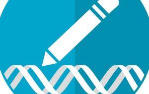 Мы готовы? Достижения CRISPR означают, что наступила эра редактирования генов зародышевой линии