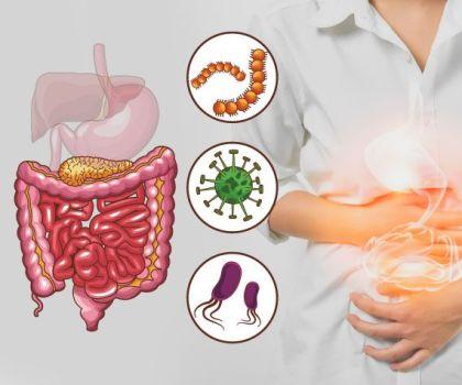 Что такое дисбактериоз кишечника и как его вылечить?