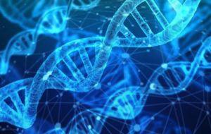 Ориентация на незаменимый белок может привести к новым методам лечения рака груди