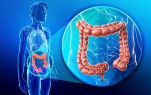 Определение онкомаркеров рака прямой кишки