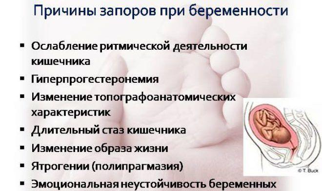 Чернослив от запора при беременности