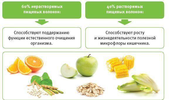 Роль пищевых волокон в рационе питания