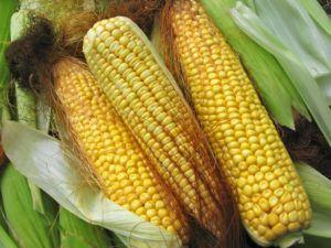 Эфективный народный метод - отвар из кукурузных рылец