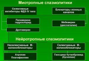 Классификация спазмолитиков