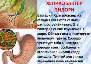 Хеликобактер является одной из причин заболевания поджелудочной железы