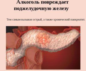 алкоголь влияет на функции поджелудочной железы