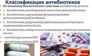 Классификация антибиотиков