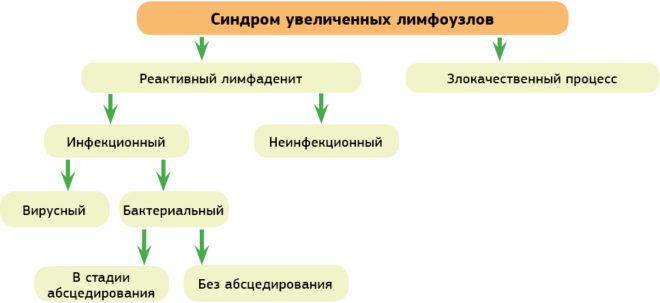 Клиническая классификация синдрома увеличенных лимфатических узлов у детей