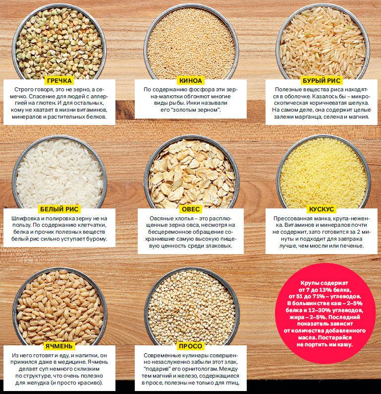 Какую Кашу Можно На Белковой Диете. Список продуктов и меню для похудения: что можно есть на белковой диете, сколько можно скинуть в весе