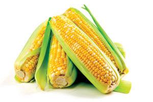 Кукуруза при панкреатите