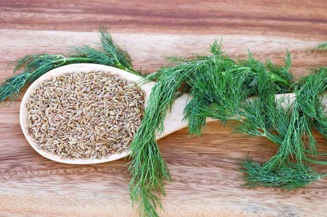 Настои из семян укропа или фенхеля