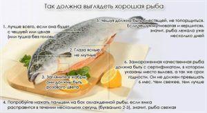 Правила выбора рыбы