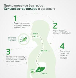 Проникновение Хеликобактер пилори в организм человека