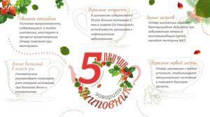 Пять причин заваривать шиповник