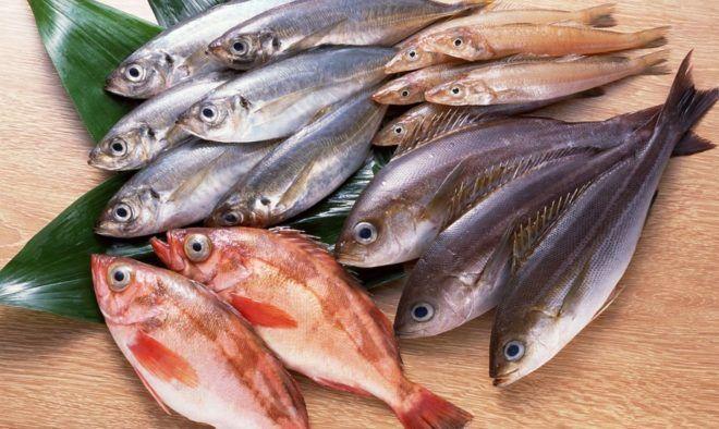 Рыба может стать источником инфекции