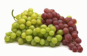 Виноград необходим при хронической форме панкреатита