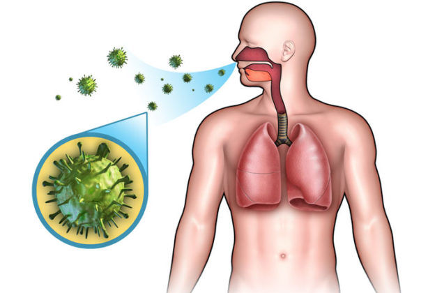 Вирусные заболевания в основном проникают воздушно-капельным путём