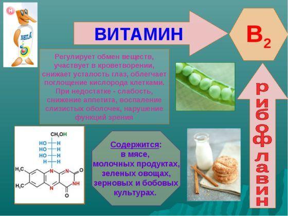 Витамин В2