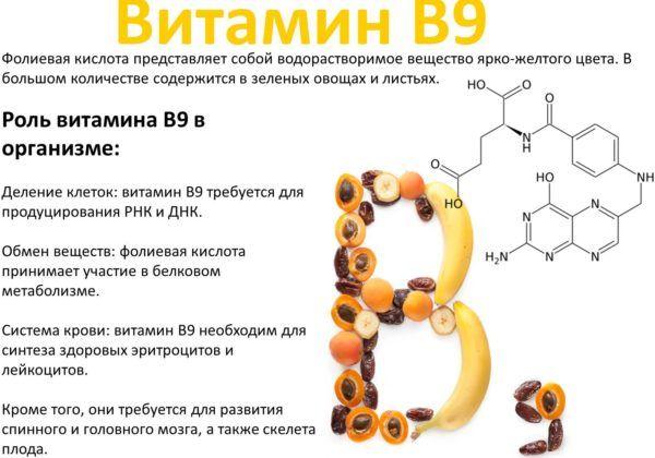 Витамины B9