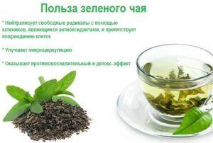 Зеленого чая при панкреатите