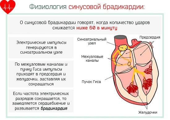 Брадикардия при рождении у ребенка при тяжелом течении холестаза у матери