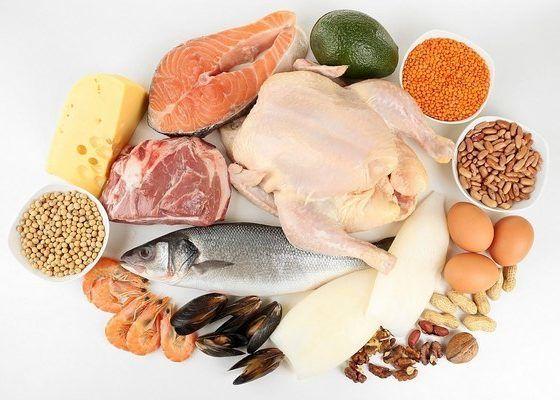 Отварные белковые продукты
