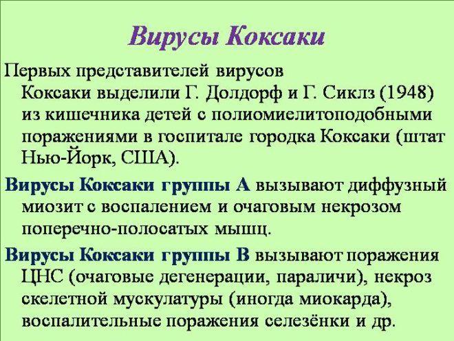 Вирусы Коксаки