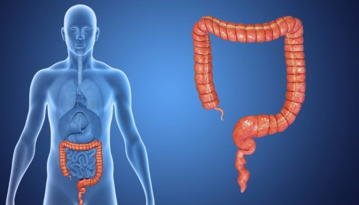 Воспаление внутренней оболочки толстой кишки