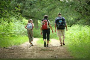 Ежедневные прогулки для профилактики тяжести в желудке и комка в горле