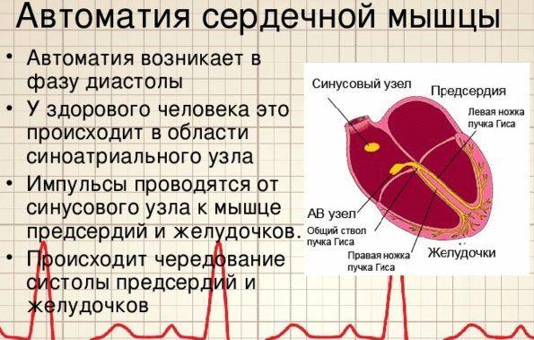 Нарушения работы сердечной мышцы при вирусе Коксаки